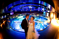 The New England Aquarium wedding photos - Mackenzie and Andy